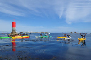 Kayakistes à l'île de Sein